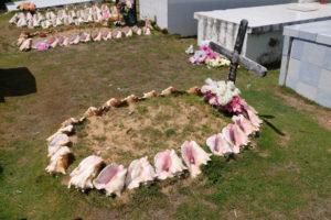 cimetière marin aux saintes