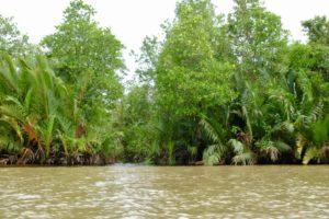 le parc national de Ream