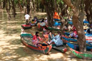 Les mangroves du Tonlé Sap