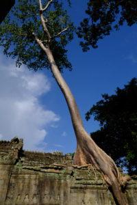 Preah Knan temple