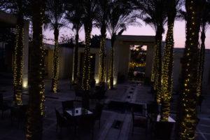 couché du soleilAl Azhar garden