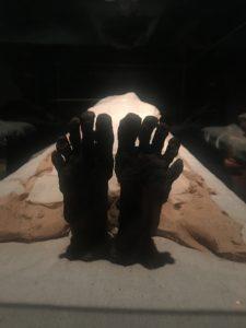 musée de Louxor momie