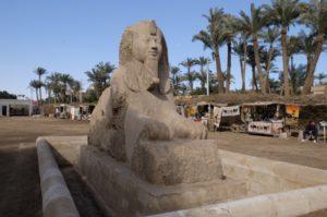 Sphinx du site de Memphis